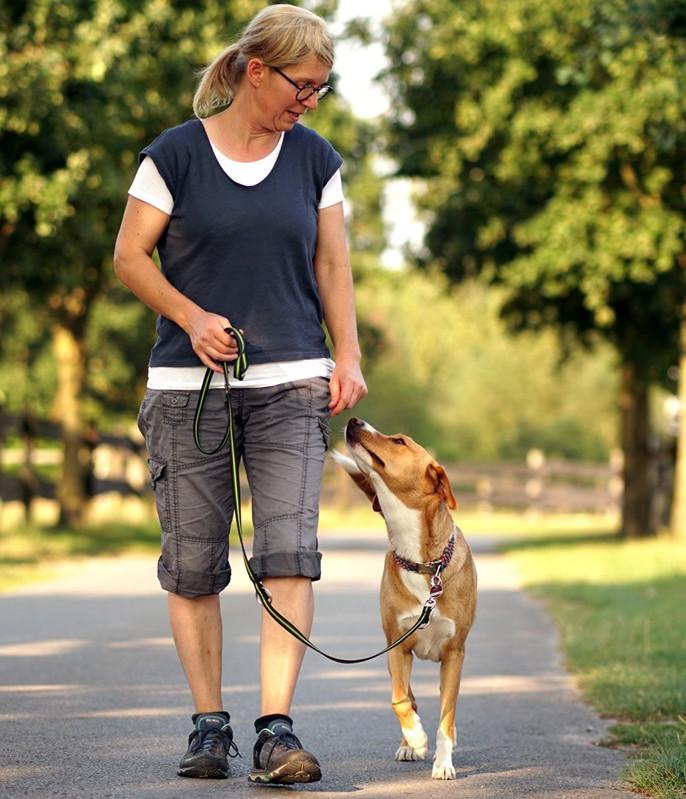 Laufen an der lockeren Leine lernst du bei Hundeschule MATA