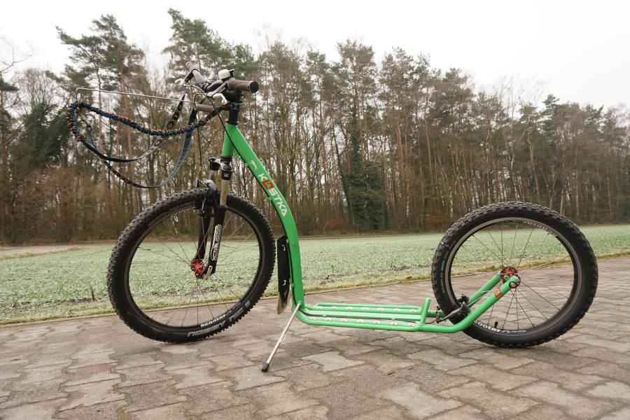 Dogscooter: Technisch im Januar 2020 durch eine Fahrradwerkstatt kontrolliert und in Stand gebracht worden