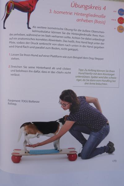 Praxisbuch-Hundefitness-Einblick-2