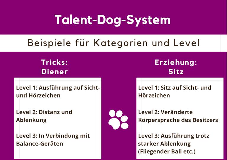 Triathlon Dog System